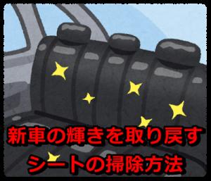 car_zaseki_pikapika
